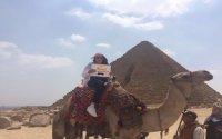 Giza Pyramids, Memphis, Sakkara Tour with lunch and Camel Ride Between Pyramids